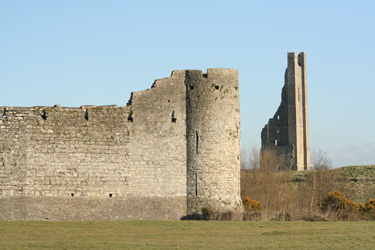 Trim castle and Yellow Steeple